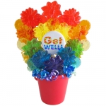 Rainbow Get Well Lollipop Bouquet